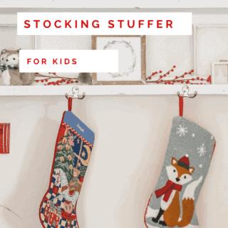 20+ Best Stocking Stuffers for Kids under $10 (2021)