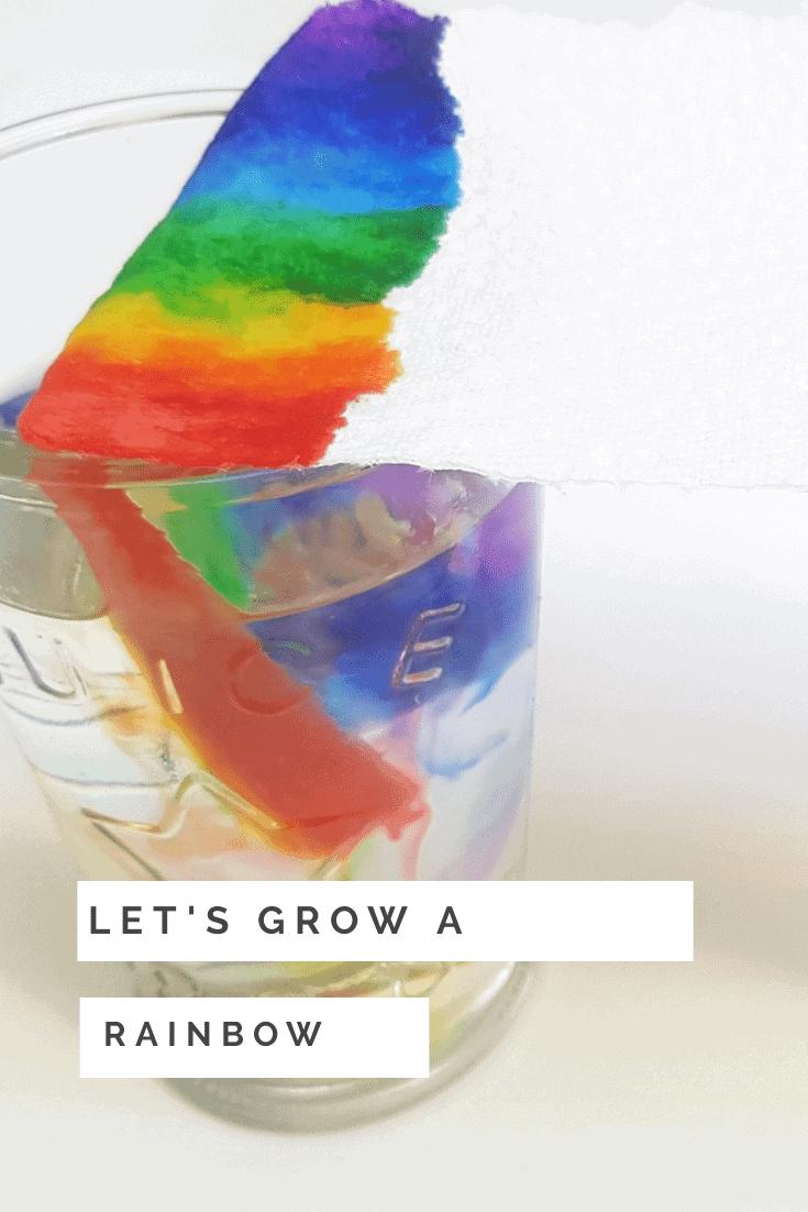 grow a rainbow paper towel experiment