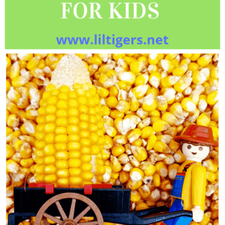 Awesome Corn Sensory Bin for Kids (age 3+)