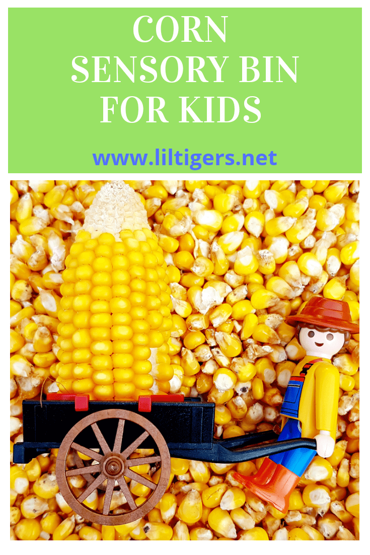 corn sensory bin for kids
